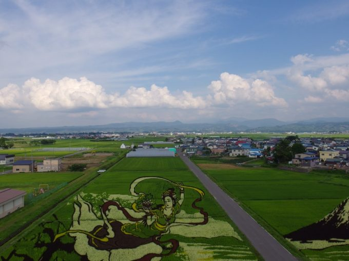 田舎館村役場から眺める田んぼアートと八甲田山の山並み