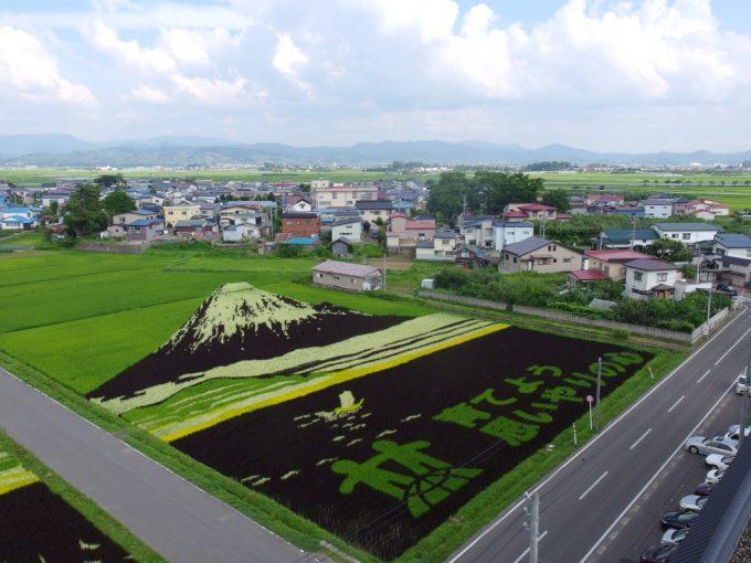 田舎館村名物田んぼアート富士山