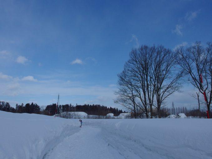 厳冬の青森三内丸山遺跡見渡す限りの雪原