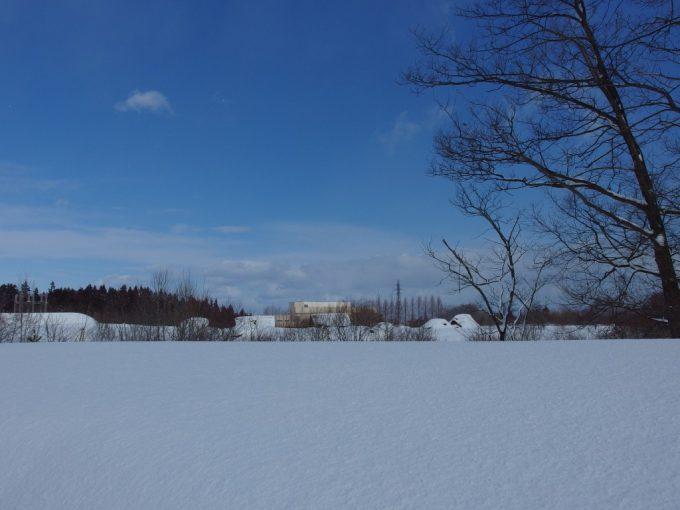 厳冬の青森三内丸山遺跡雪原を彩る冬晴れの青空