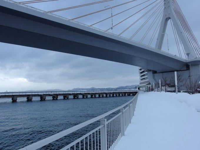 凍てつく冬の海と青森ベイブリッジ