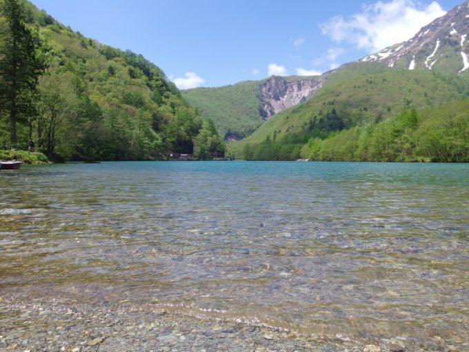 初夏の上高地どこまでも澄んだ水を湛える大正池