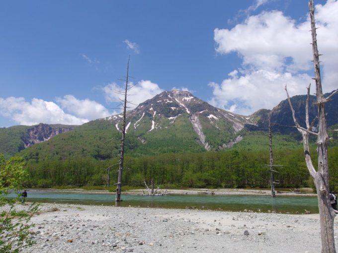 初夏の上高地大正池のシンボル立ち枯れの木々と残雪の焼岳