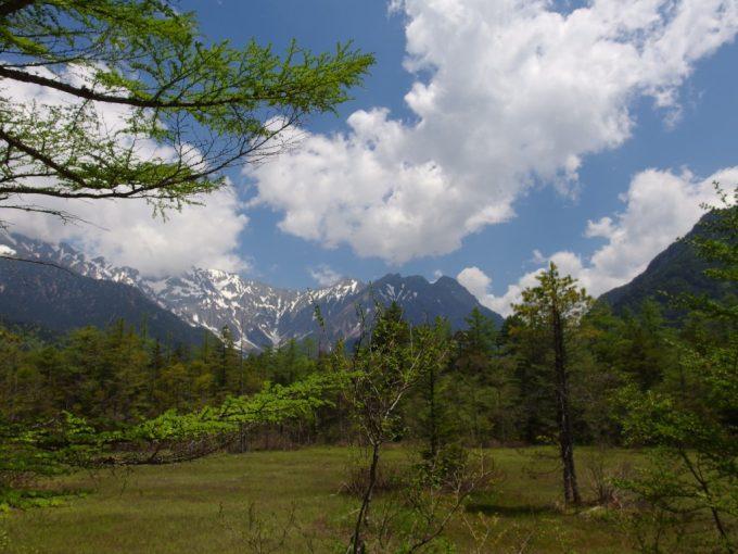 初夏の上高地田代湿原穂高と新緑青い空