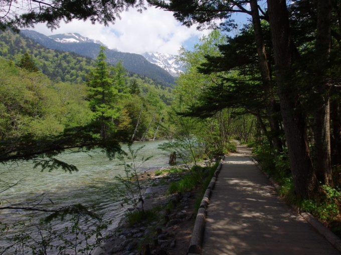 初夏の上高地梓梓川沿いの木道と涼しい木陰