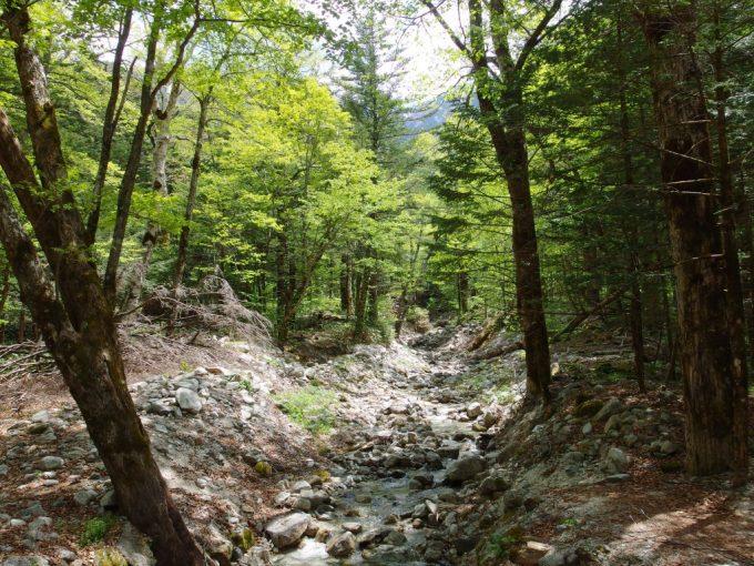 初夏の上高地梓川に土砂を供給する恐ろしい谷