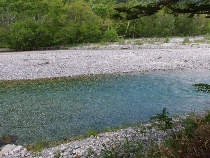上流だというのに豊富な水量をみせる梓川