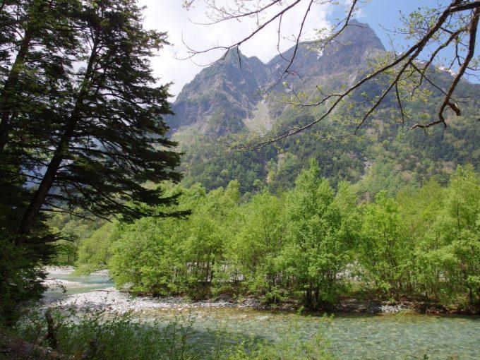 初夏の上高地水と緑と空の世界