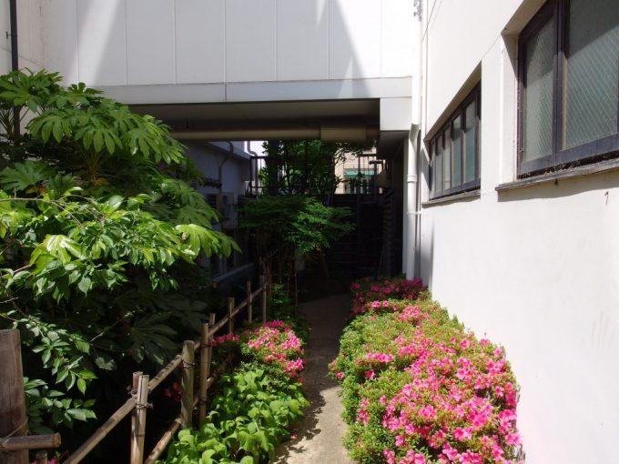 初夏の松本楽しい裏路地探検