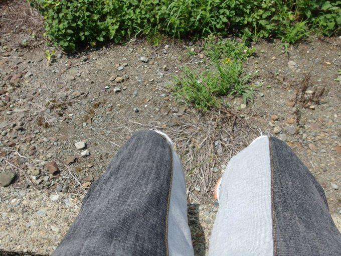 ローカル線夏休みの少年気分で列車を待つ