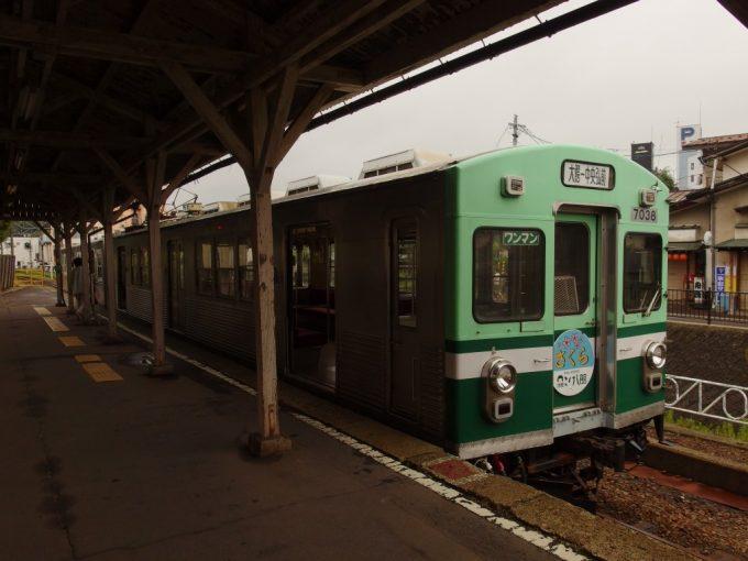 弘南鉄道大鰐線特別塗装ラッピングの電車