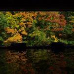 秋の大沢温泉山水閣豊沢の湯色とりどりの紅葉一幅の絵のような眺め