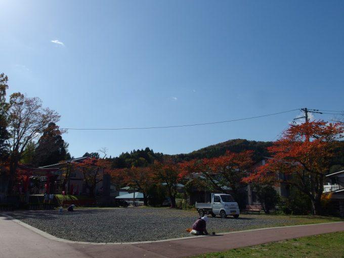 巽山公園を彩る桜紅葉と秋の空