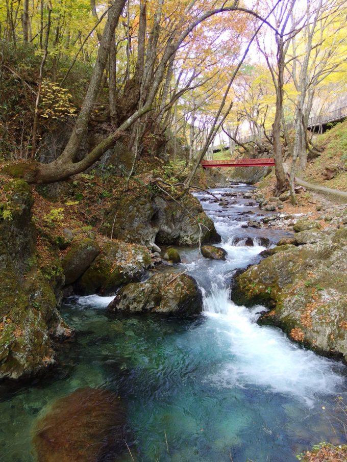 龍泉洞より流れ出る清らかな渓流