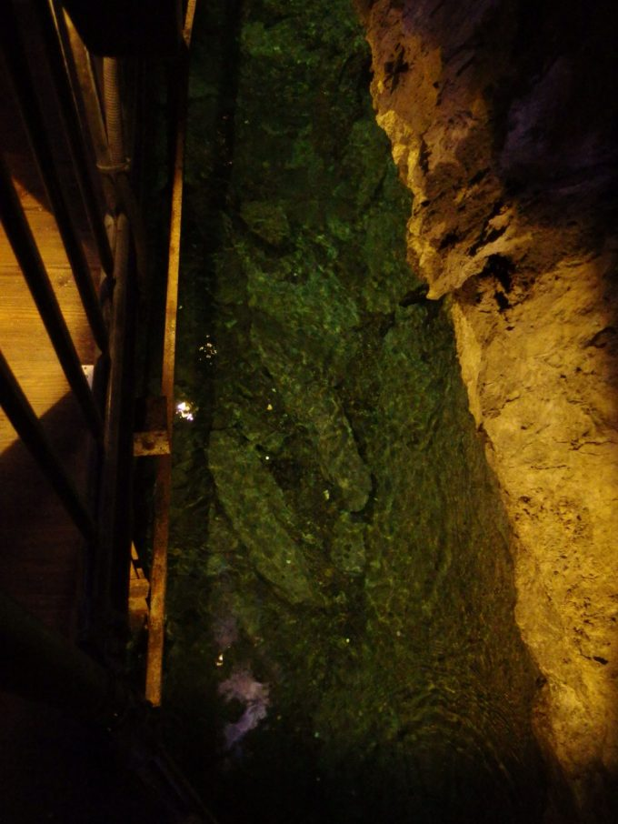 龍泉洞足元には澄んだ地底河川