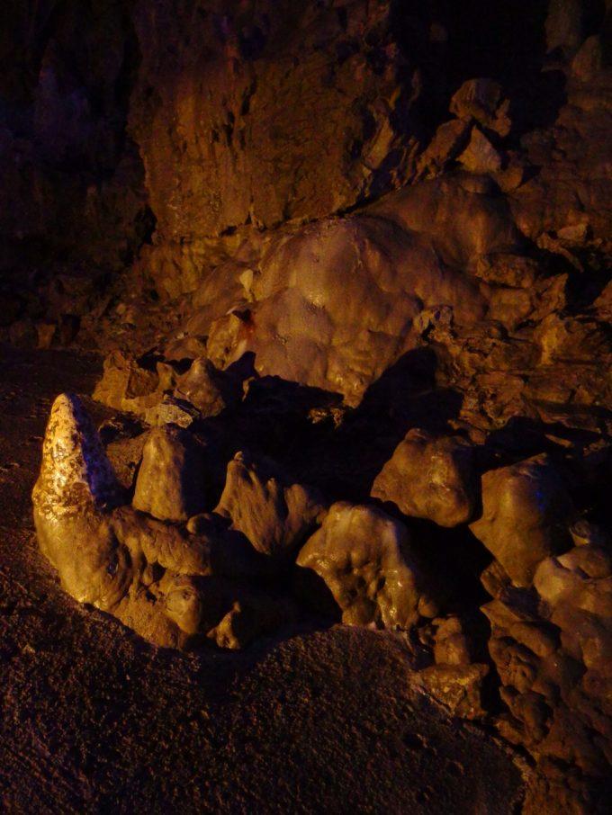 龍泉洞足元にたくさん生える石筍