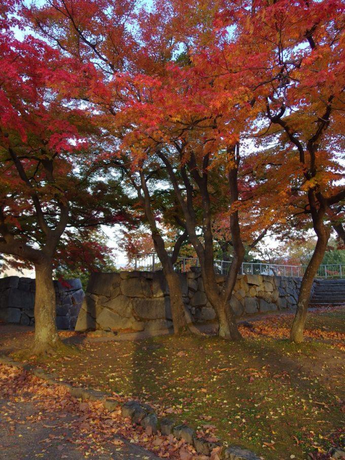 秋の盛岡夕方の岩手公園石垣にのびる自分の影