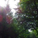 空と谷、二つの誘湧。~初夏の奥羽 山の湯旅 2日目 ①~