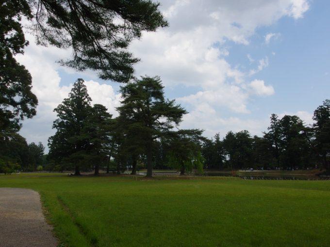 ビロードのような若草に覆われる初夏の毛越寺浄土式庭園