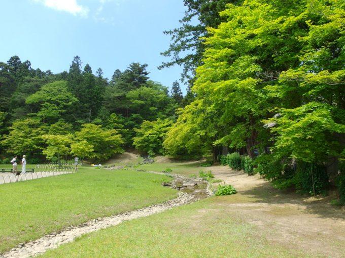 初夏の鮮やかな緑が美しい毛越寺浄土式庭園