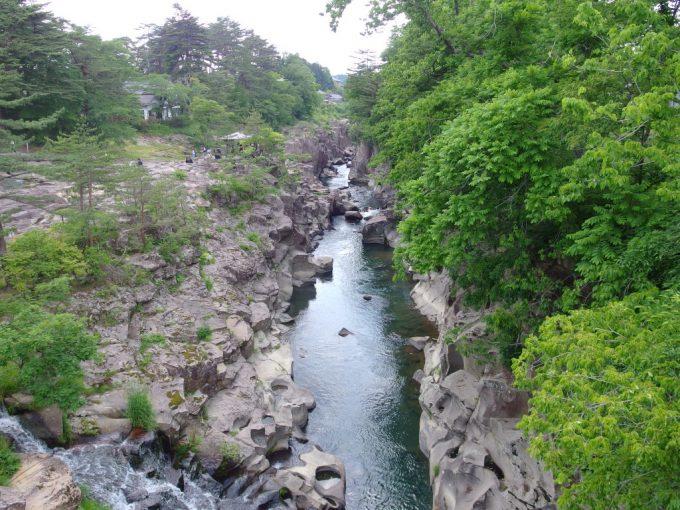 初夏の新緑厳美渓
