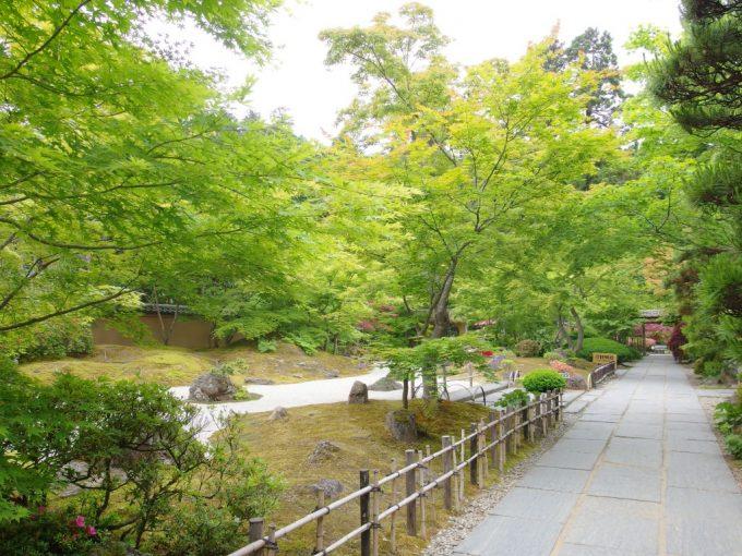 初夏の緑に包まれる円通院の美しい石庭