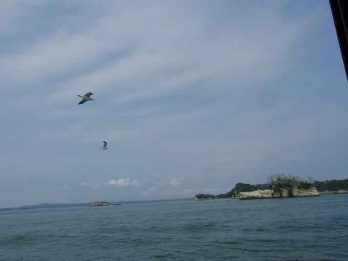 日本三景松島遊覧船から眺める奇岩と青い海、カモメと青い空