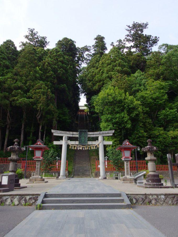 荘厳な森に包まれる鹽竈神社表参道