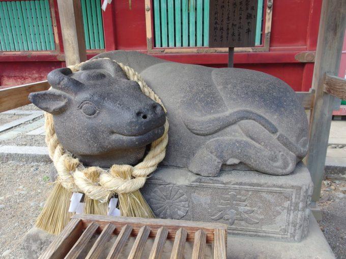鹽竈神社愛らしい撫で牛