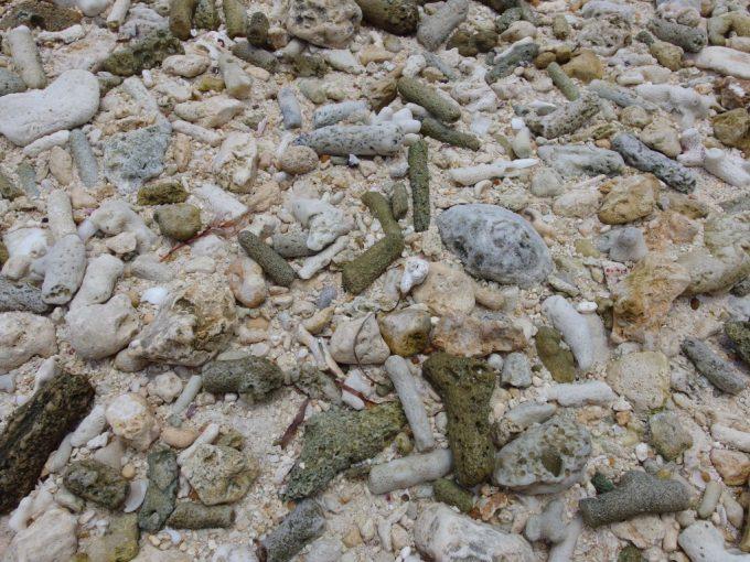 竹富島星の砂の浜カイジ浜に落ちる無数の珊瑚
