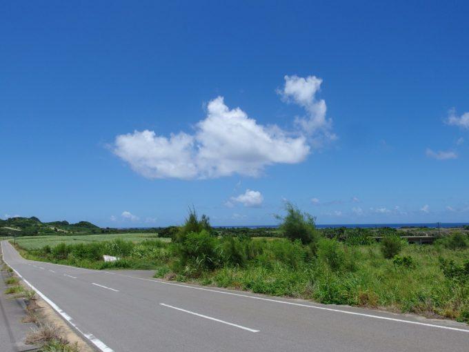 石垣島ゆるく長い上り坂振り返ればサトウキビ畑の先には青い海