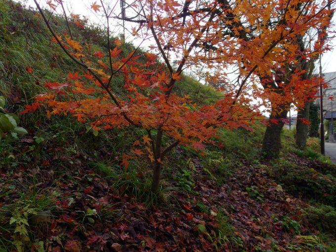 咲花温泉磐越西線築堤の紅葉