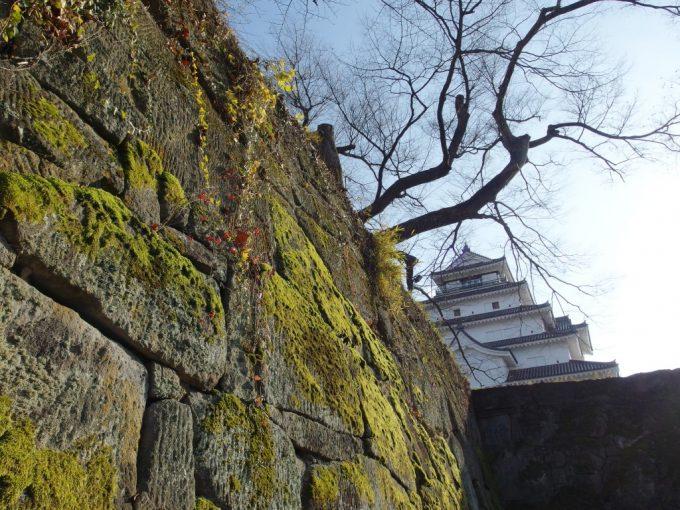 晩秋の会津若松鶴ヶ城苔むした石垣