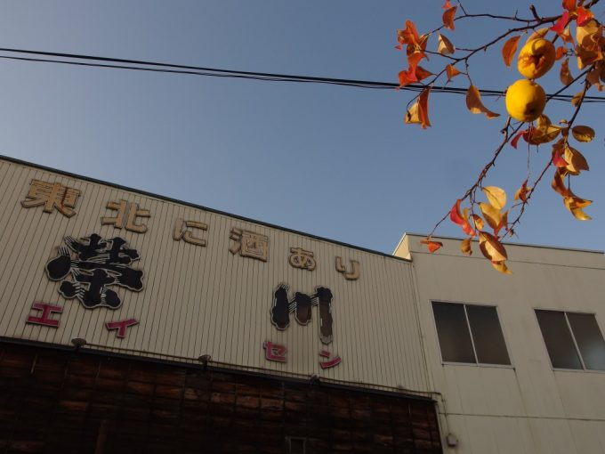 晩秋の日に照らされるかりんと榮川の酒蔵
