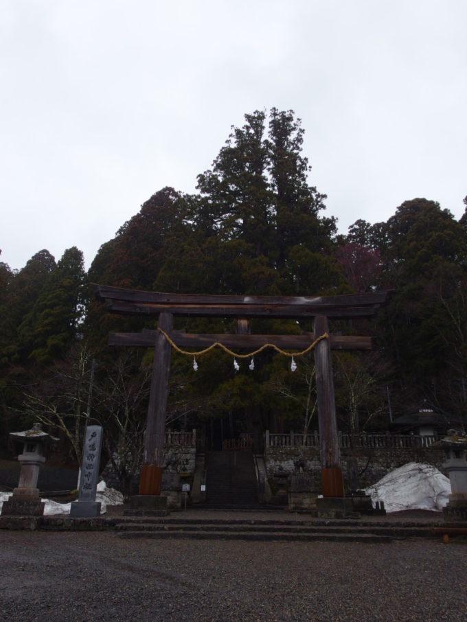 戸隠神社中社鳥居