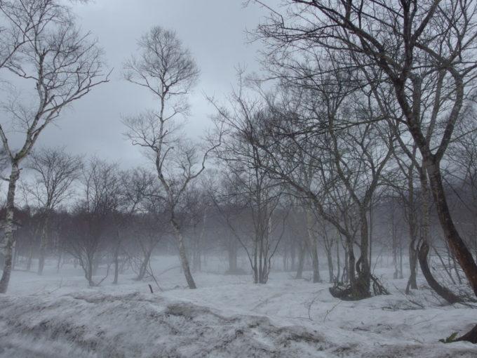 残雪から立ちのぼる融雪霧
