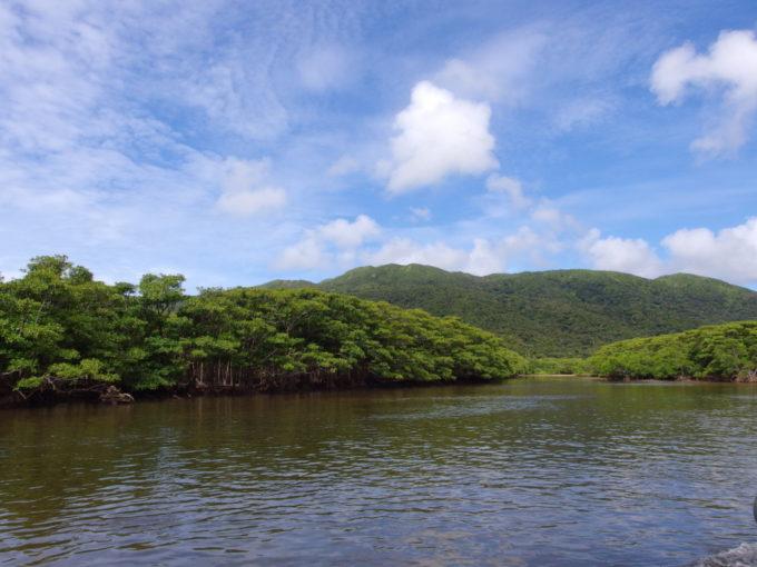 西表島仲間川のリアルジャングルクルーズ