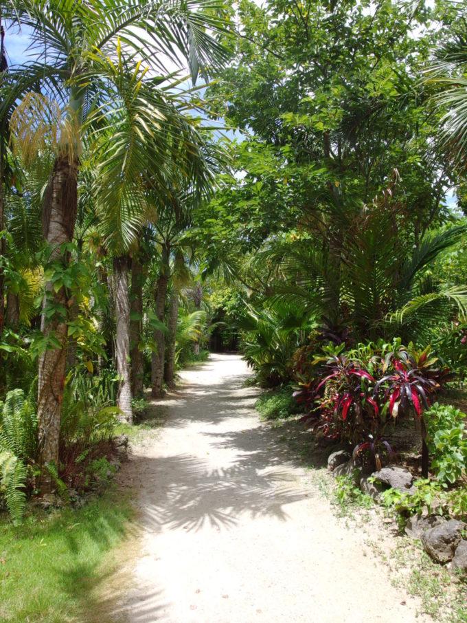 島全体が植物園の由布島