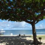 木陰から眺めるフサキビーチ