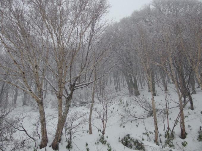 11月初冬の酸ヶ湯温泉窓の外は雪景色