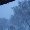 冬を迎えに。~酸ヶ湯を染める清き白 3日目~