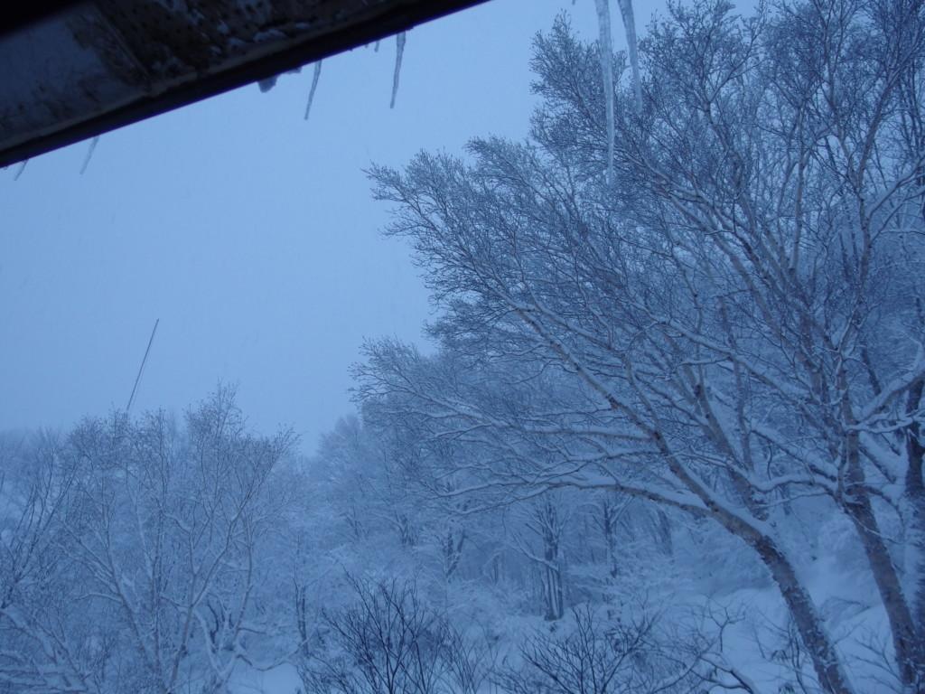 初冬の酸ヶ湯で迎える青白い朝