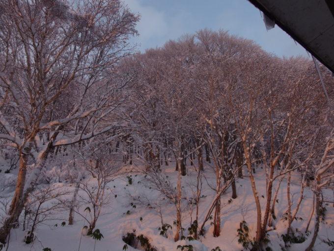 夕やけに染まる酸ヶ湯の裏山雪景色