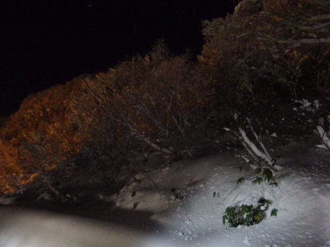初冬の酸ヶ湯で過ごす最後の夜
