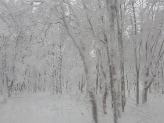 酸ヶ湯温泉旅館送迎バスから眺める初冬の雪景色