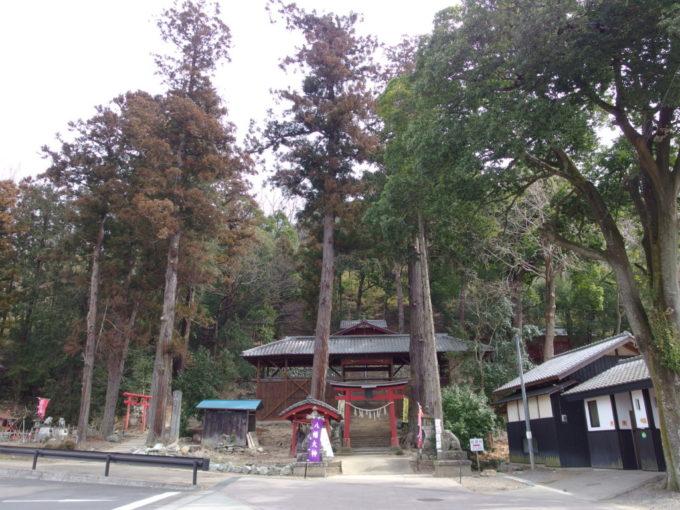 甘楽町小幡八幡宮の鳥居と立派な杉木立