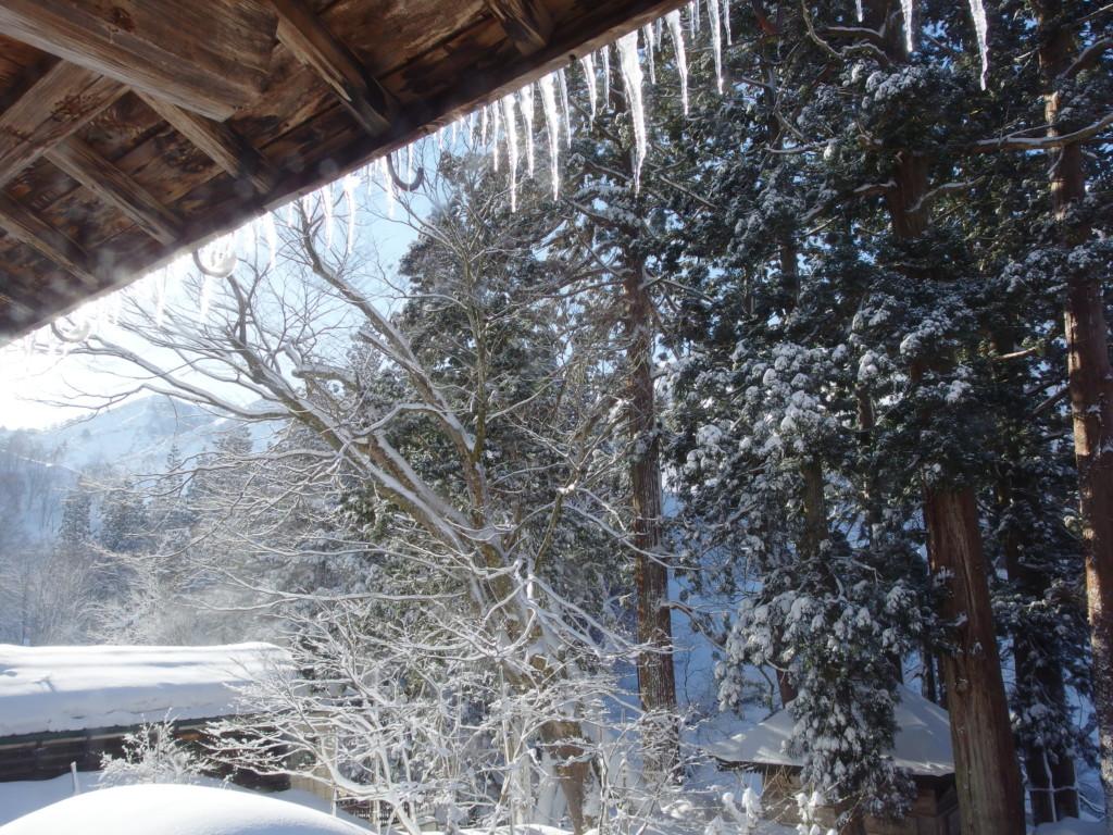 栃尾又温泉自在館で迎える晩冬の晴天の朝