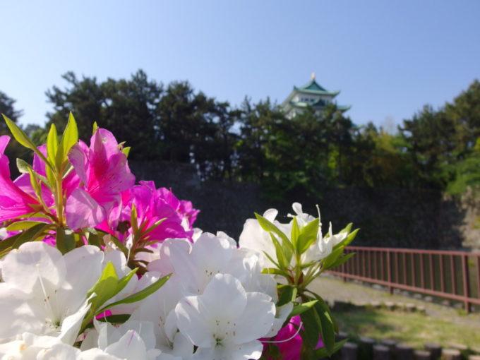 初夏の名古屋城とつつじの共演