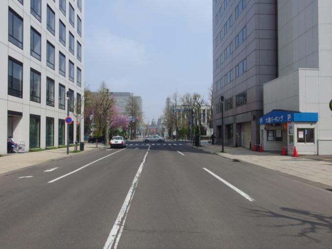 朝の通りの先に見える北海道庁赤れんが庁舎