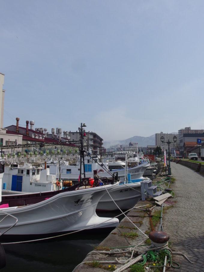 大きな集魚灯が連なる釣り船が係留される小樽運河